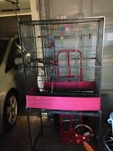 BIRD CAGE ON WHEELS Ashmore Gold Coast City Preview