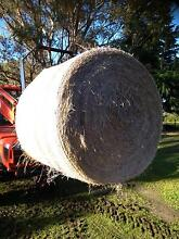 Quality pasture hay for sale delivered to warragul area Warragul Baw Baw Area Preview