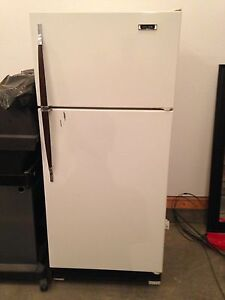 Garage or basement fridge