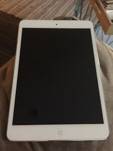 iPad Mini 1st Generation - Mint Condition