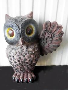 Large 30cm Ceramic Owl Nowra Nowra-Bomaderry Preview