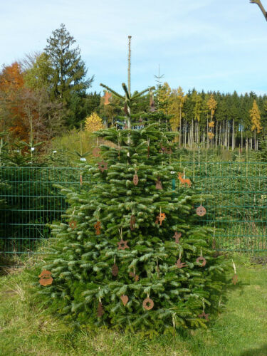 weihnachten collection on ebay!, Garten ideen