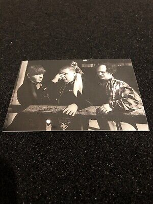 3 Stooges Costume (The 3 Stooges Etched Foil Chase)