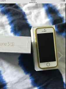 iPhone 5s 64gb unlocked gold colour as new condition Chester Hill Bankstown Area Preview