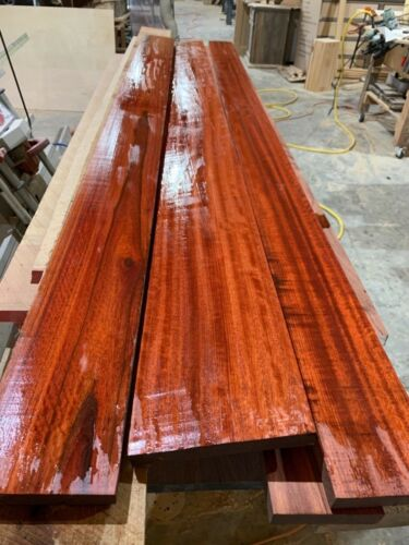 10 Board Feet of Beautiful Bloodwood Lumber Free Shipping!