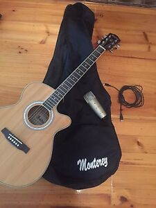 Guitar and microphone for sale Grange Charles Sturt Area Preview