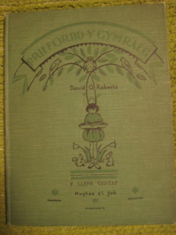 Vintage 1933 Original WELSH CHILDREN ILLUSTRATED Textbook 112 pgs HC 211