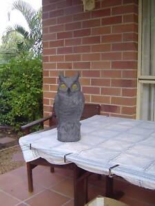 Garden Owl To Deter Birds