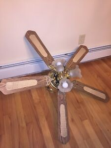 Ceiling fan and lights combo