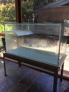 Turtle/fish tank Seacombe Heights Marion Area Preview