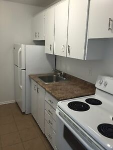 Renovated, Bright, and Clean 1 Bedroom Apartments // March 1st