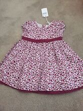 Pumpkin Patch Baby Dress (Size 6-12 months) Meadow Heights Hume Area Preview