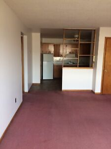 Heated 1bedroom downtown