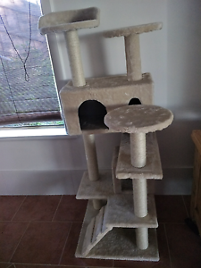 Cat scratching pole Quinns Rocks Wanneroo Area Preview