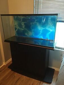 35 Gallon Fish Tank With Stand