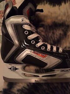 Skates. Only been put on literally twice