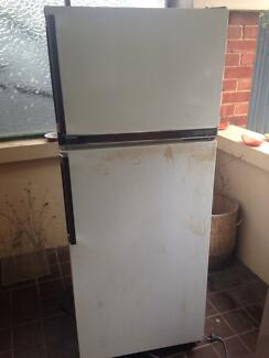 Old Fridge Black Forest Unley Area Preview