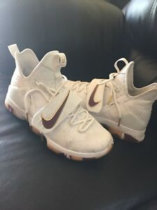 Nike Lebrons basketball shoes