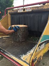 TREE REMOVAL WOOD CHIPPING HIRE Quakers Hill Blacktown Area Preview