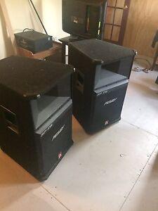 Peavey SP 2G speakers