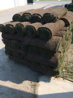 SOD DELIVERY/ SOD INSTALLATION