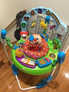 FisherPrice Laugh and Learn Jumperoo