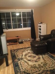 Bright 3 1/2 in heart of Sainte-Anne-de-Bellevue, $698, Jan 1
