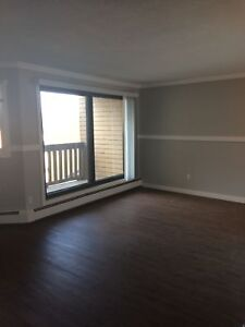 Huge, Bright 1 Bedroom Suite, Underground Parking Available