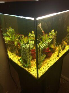 Juwel Lido 200 Aquarium and Cabinet Bassendean Bassendean Area Preview