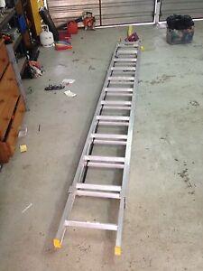 Gorilla extended ladder Beaudesert Ipswich South Preview