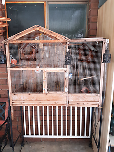 Assorted birds with cages Gosnells Gosnells Area Preview