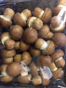 Artificial Brown Button Mushroom Decorative Fake Vegetable Bag of 24