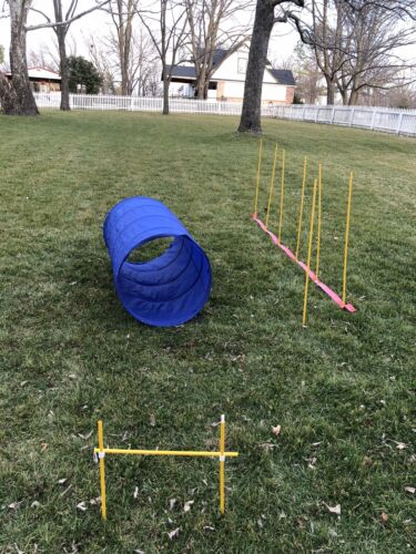 Dog Games Doggy Agility Equipment Pet Obstacle ...