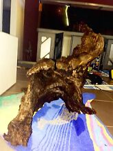 Driftwood for fish tank or pond Butler Wanneroo Area Preview