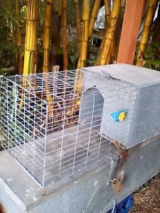 Rat or guniea pig cage Umina Beach Gosford Area Preview