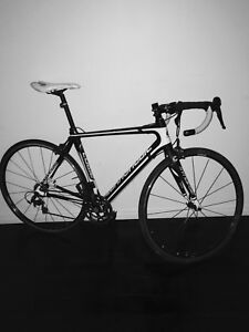 """Cannondale synapse 54"""" frame"""