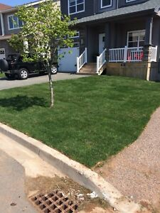 Lawn aerating best price in town