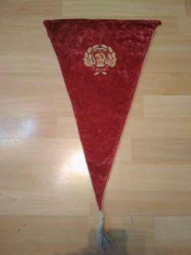 Rare velvet pennant of the RSFSR 1940-50s USSR.
