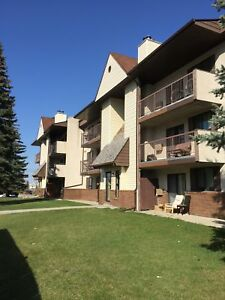2 Bedroom Near UofM