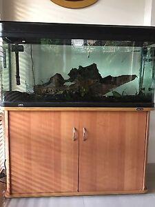 Fish tank Hurstville Hurstville Area Preview