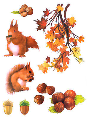 g Herbst Blätter Eichhörnchen Fenstersticker Fenster Deko (Herbst Dekoration)