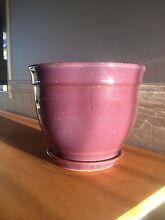 Purple glazed terracotta garden pot Warwick Southern Downs Preview