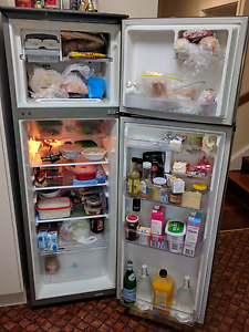 Second hand refurbished fridge Southport Gold Coast City Preview