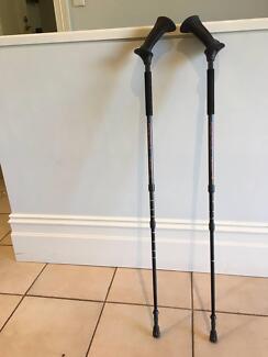 Pacer walking poles