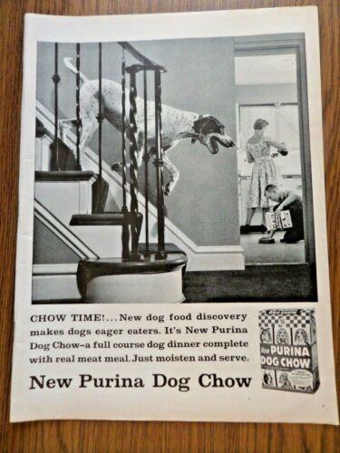 1957 Purina Dog Chow Ad   German Short Hair Pointer Dog