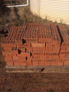 Red bricks Bendigo Bendigo City Preview