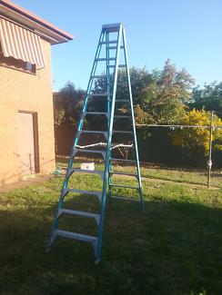 Bailey 12 foot ladder