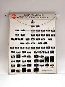 Leitz Leica Stammbaum Plakat auf Platte aufgezogen