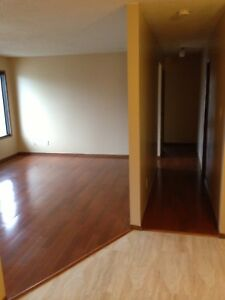 Perfect for 1 or couple - LARGE 1 Bedroom Apartment - Balcony