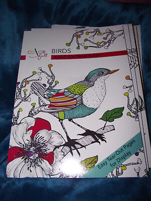 BRAND NEW Color Me Birds Adult Coloring Book Easy Tear Out Pages For Display